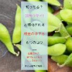 無料ダウンロード【「超絶ウマイ!」枝豆のゆで方・6つのコツ】